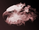 Smoke Eagles